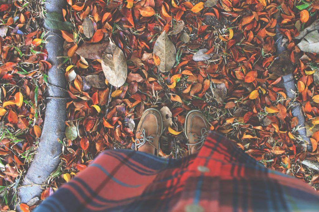 Что почитать когда на душе осень, подборка книг, интернет-журнал COQUET