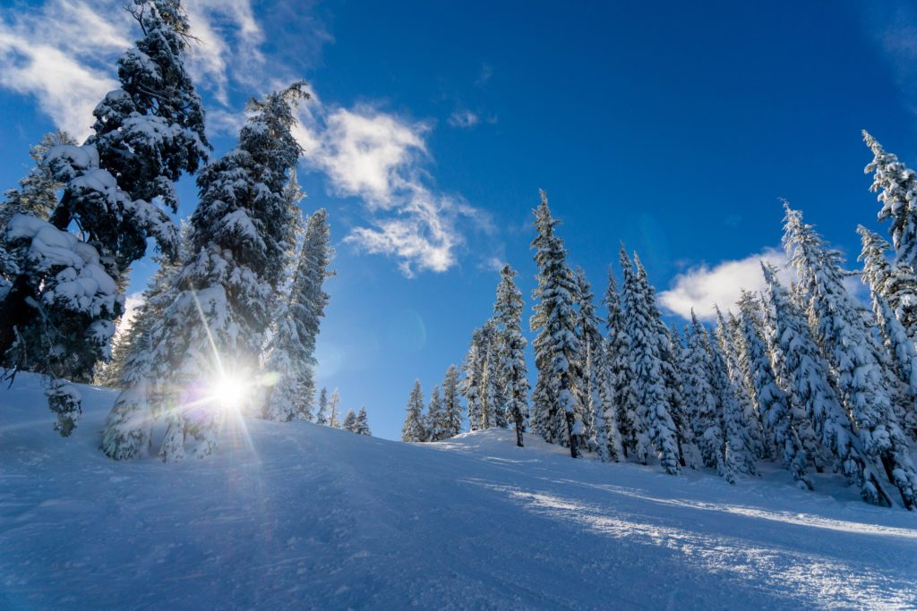 Как пережить остаток зимы, пережить холода
